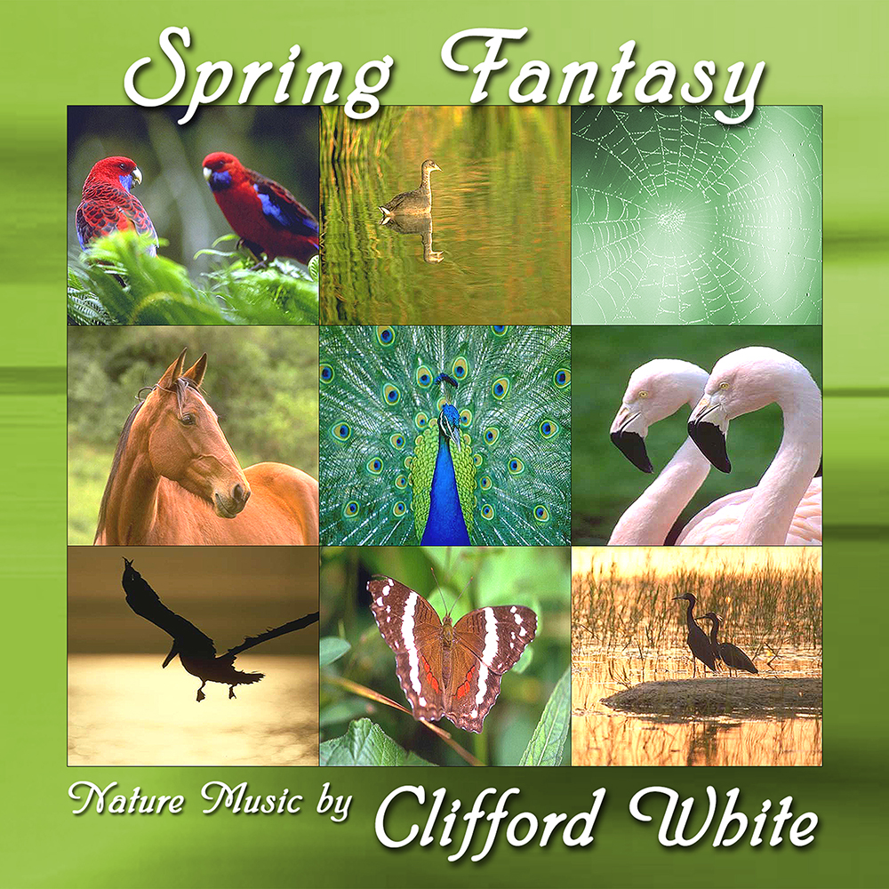 Spring Fantasy by Clifford White